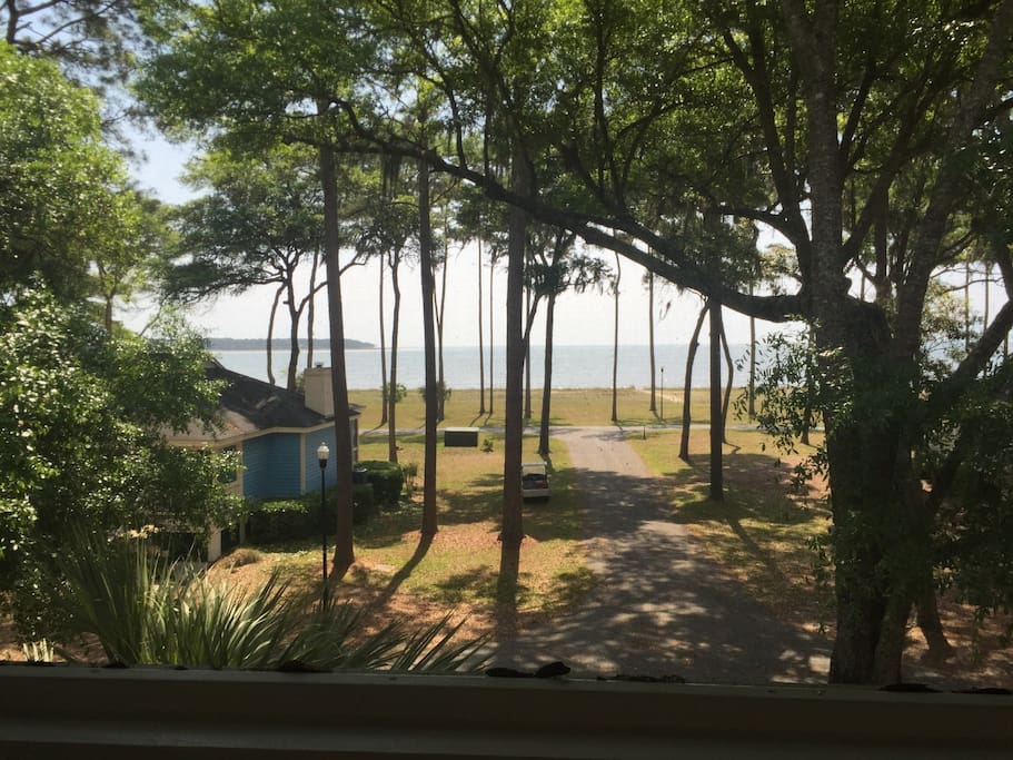 View From The Screened-In Front Porch