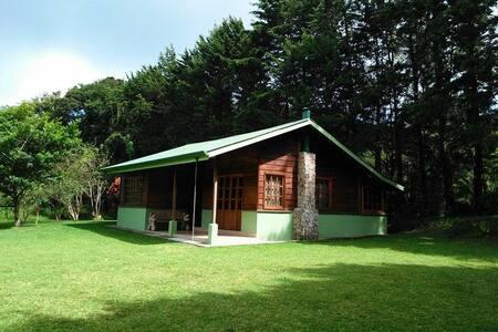 Pie de Monte Cabins - Monteverde - Cabin