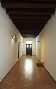 Esclusivo mansardato in centro - Rovigo - Wohnung