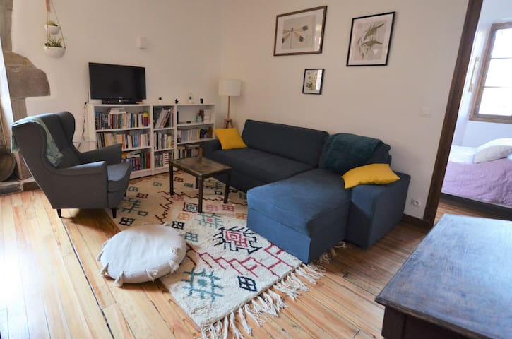 Renovated apartment in 250 years old townhouse