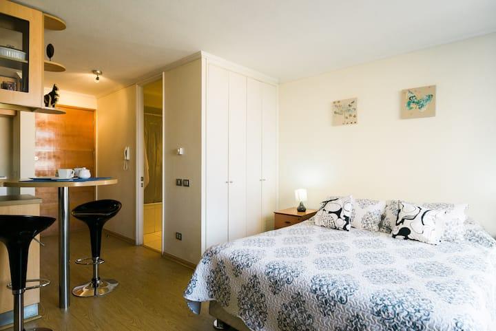 Selma Apartment Studio Providencia