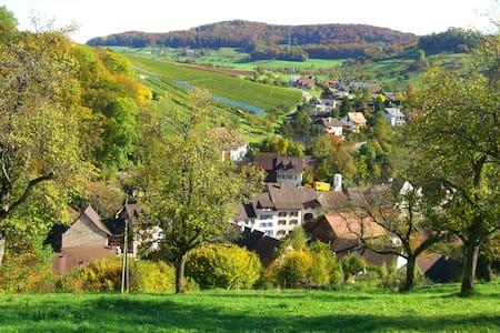 Lifestyle auf dem Lande - Wintersingen - Lejlighed