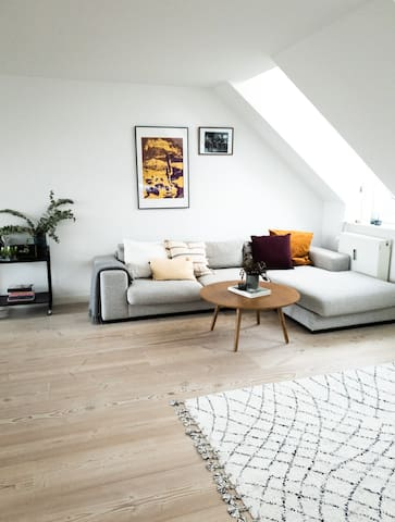 ROOFTOP-APARTMENT IN THE CENTER OF COPENHAGEN!