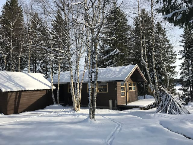 Koselig hytte 15 min fra Værnes/Stjørdal
