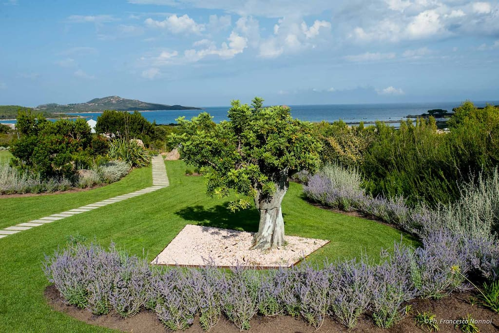 6,500sqm of beautifully maintained private garden