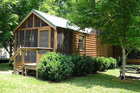 Cozy 1 River Cabin - Erwin
