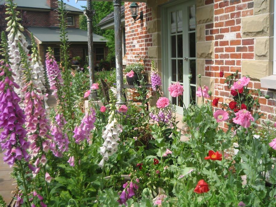 Annie's cottage spring 2016. Just gorgeous .