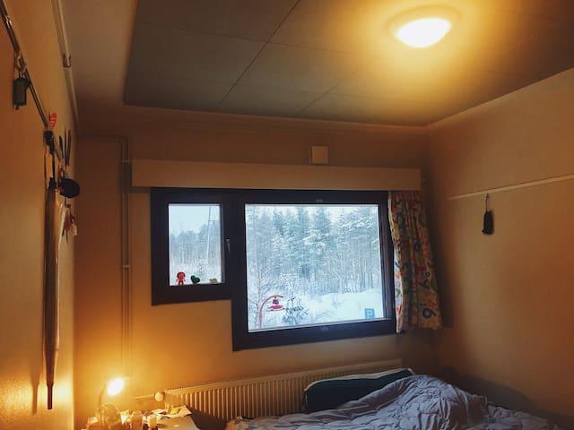 Bobby Homie - Rovaniemi - Pis