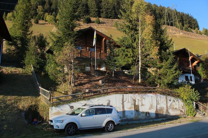Chalet-Wohnung in Sedrun