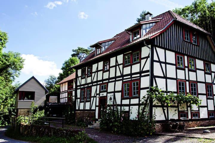 Cosy Apartment in Thuringia with Sauna