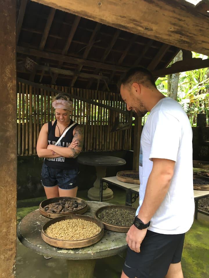 Coffee plantations tour