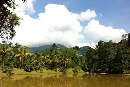 Double 2 - Chalet in the Gardens - Bentong