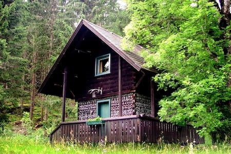 Troatkasten im Waldgut Oberhof - Gemeinde Metnitz - Mökki