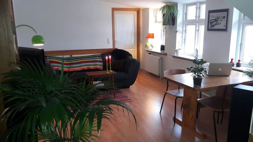 The Semi-Retro, Secondhand Home. - Svendborg - Apartamento