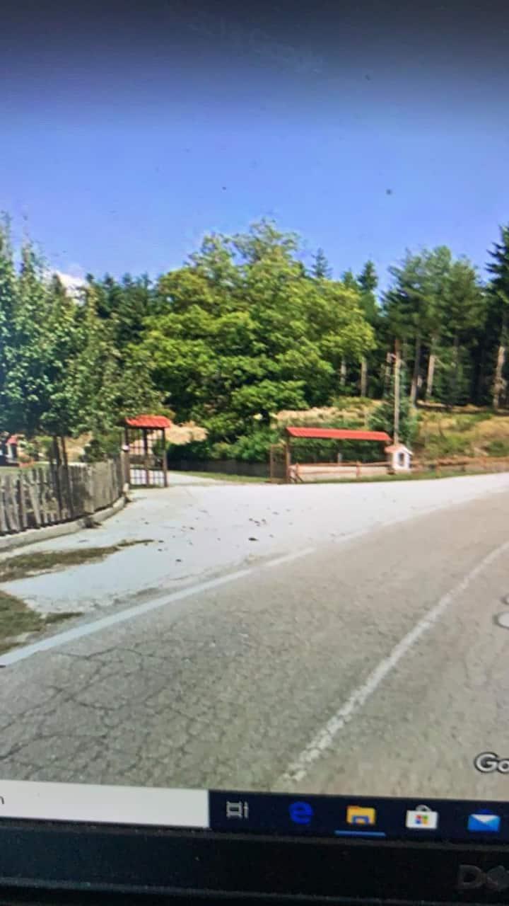 Struttura tra sconfinati boschi di pini,ospitale.