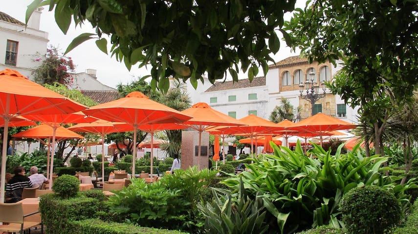 Apartamento Entero en Plaza de los Naranjos