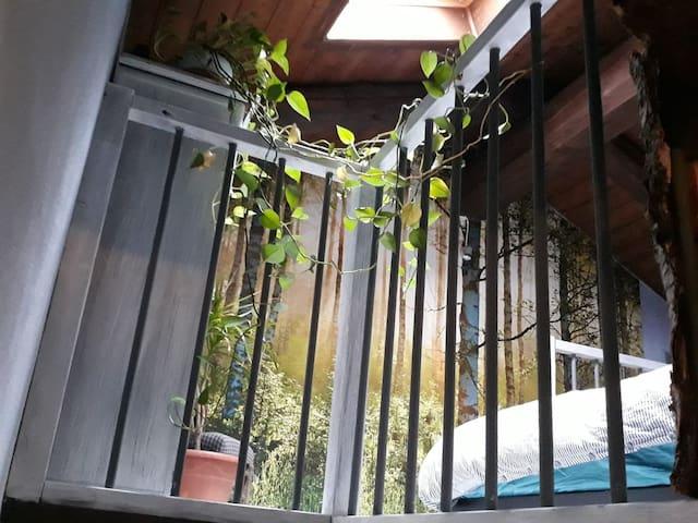 Casa nella natura con giardino a 15 min da Cuneo