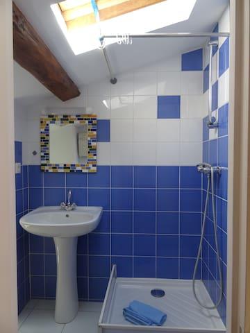 Salle d'eau avec douche. Produits de première nécessité.  Tapis de bain et serviettes de toilettes si besoin.