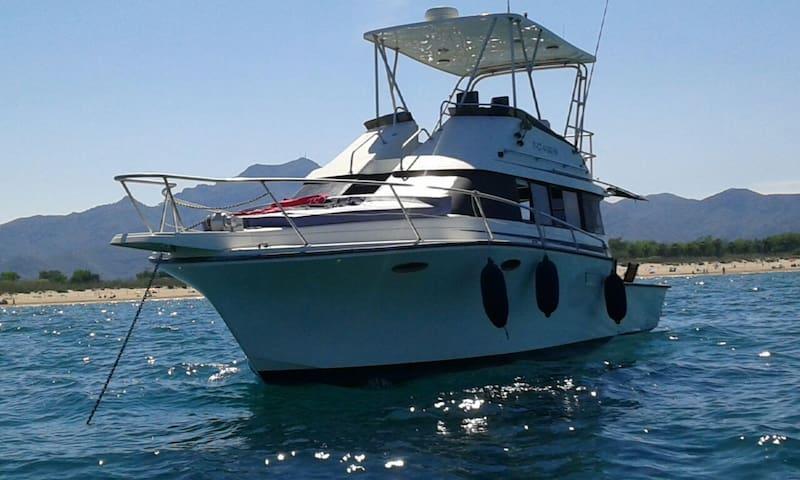 Barco en el Puerto de Gandia - Playa de Gandía - Barca