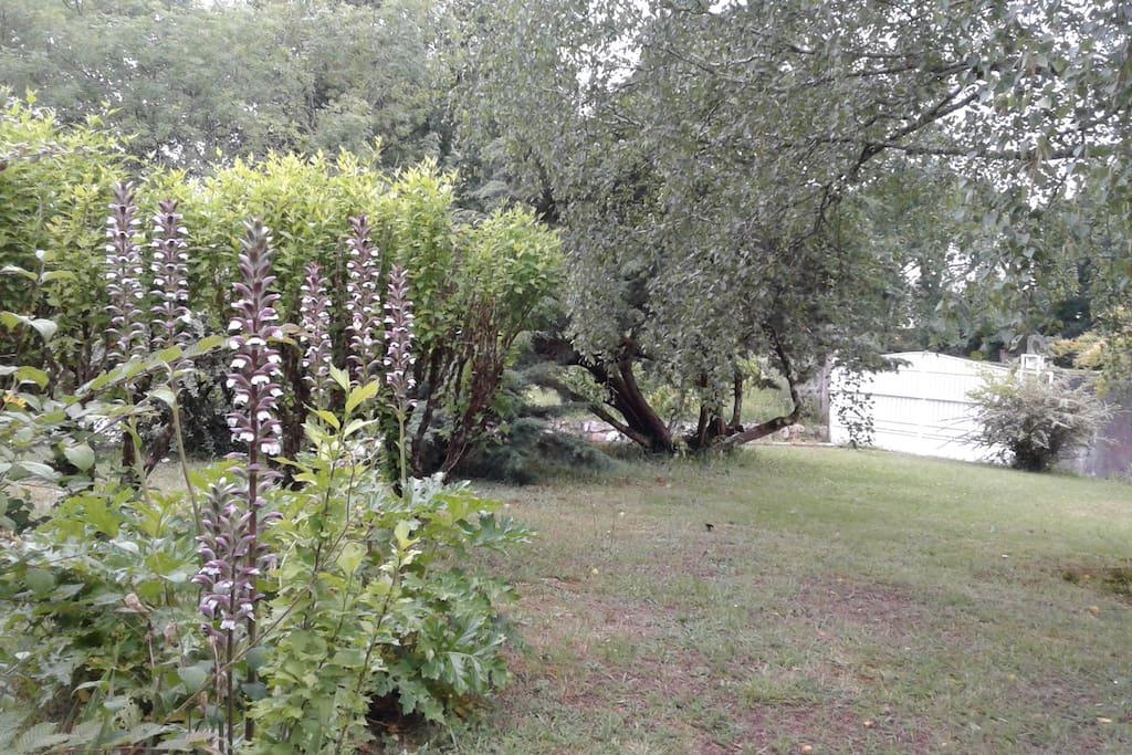 Vue sur une partie du jardin et le portail.