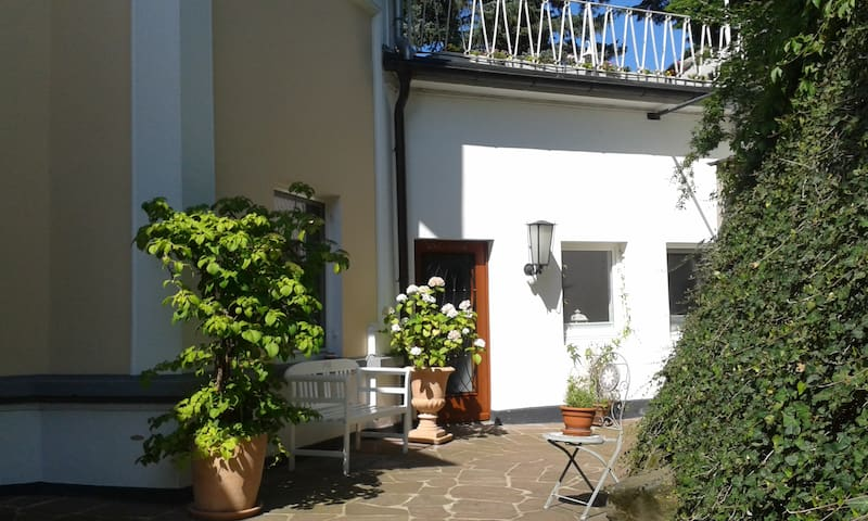 Grüne Oase im Herzen von Kassel