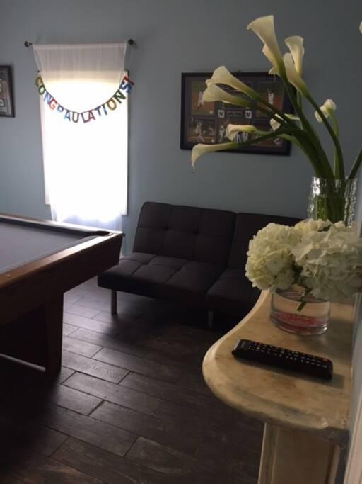 Living Room/Pool Room