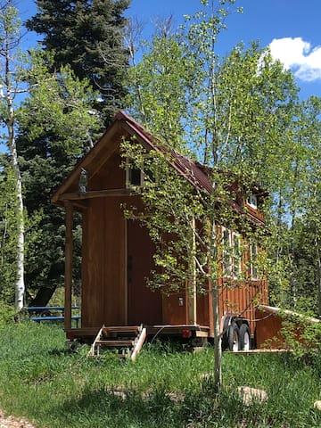 Durango Hill's Tiny House