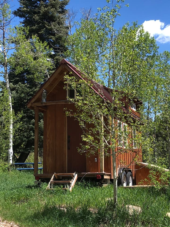 Durango Hill's Tiny House