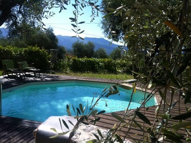 l'Olivette - Berre-les-Alpes - Bed & Breakfast
