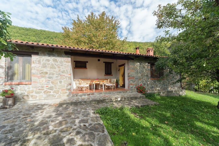 Peaceful Holiday Home in San Marcello with Pool & Terrace