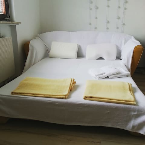 Room with a view; free parking+wifi - Karlsruhe - Apartemen