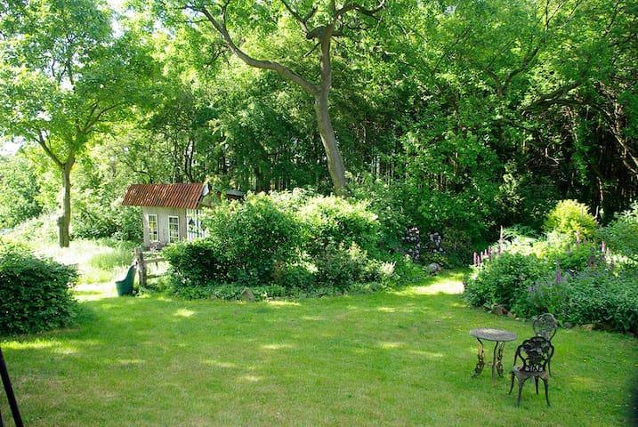 Blick in den Garten des Gastgebers