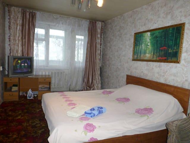 Ленинградская 65/1 (2 этаж) 1 ком квартира - Petropavlovsk-Kamchatskiy - Apartamento