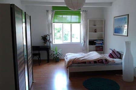 Schönes Zimmer zentral in Landshut - Landshut