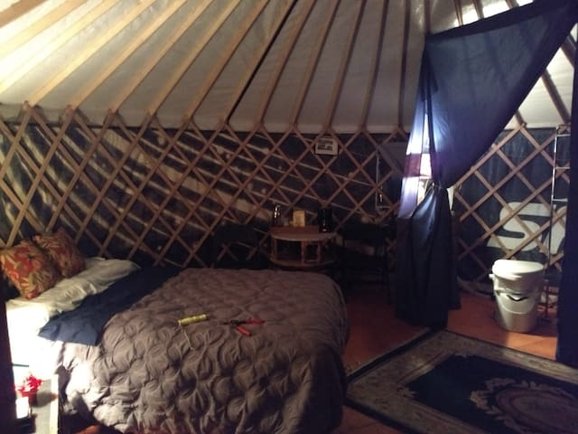 Interior of the yurt prior to the first guests. There is a full bed and a cot.