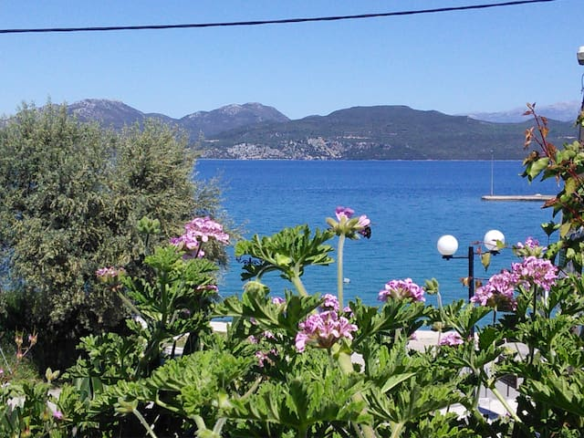 Seafront family apartment 30 meters from the beach - Lefkada - Apartment
