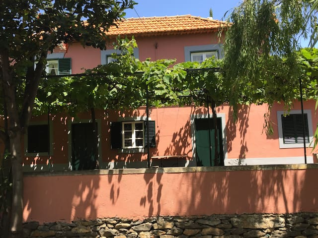 Traditional Country House in Canico - Caniço-Assomada - Dom