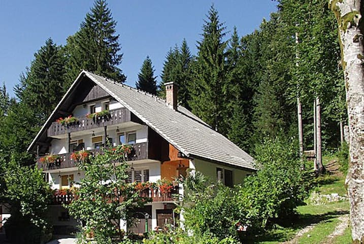 Apartments & room Destina Bohinj 1 - Ribčev Laz - Apartament