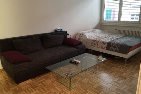 Nice flat in city center of Geneva - Wohnung