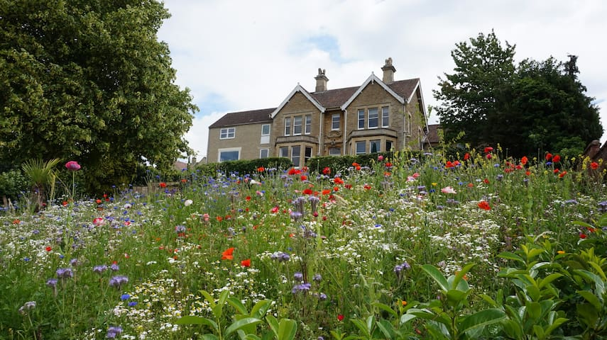 Extensive front garden with lawn and wild flowers. There is also a secure lawned back garden and patio to rear of the house