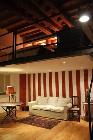 LOFT  QUADRILATERO TORINO CENTRO  - Torino - Loft