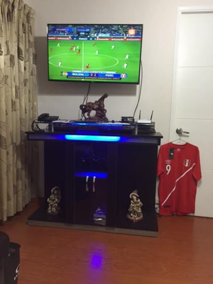 Nice Living Room with HD TV DVD Player