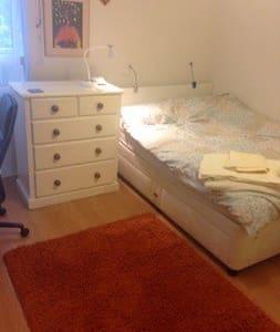 Large Single Bedroom, Teddington : close to NPL - Teddington - Wohnung