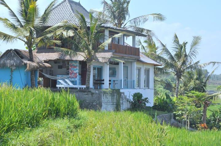 Dikaloha Surfcamp Medewi Einzelbett