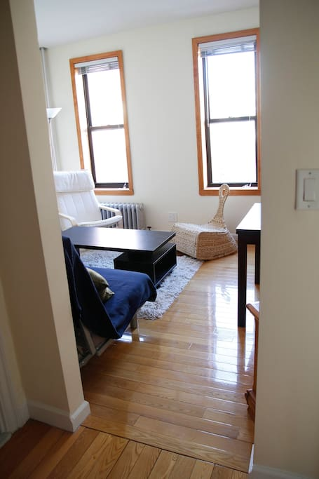 Living room (convertible bedroom)