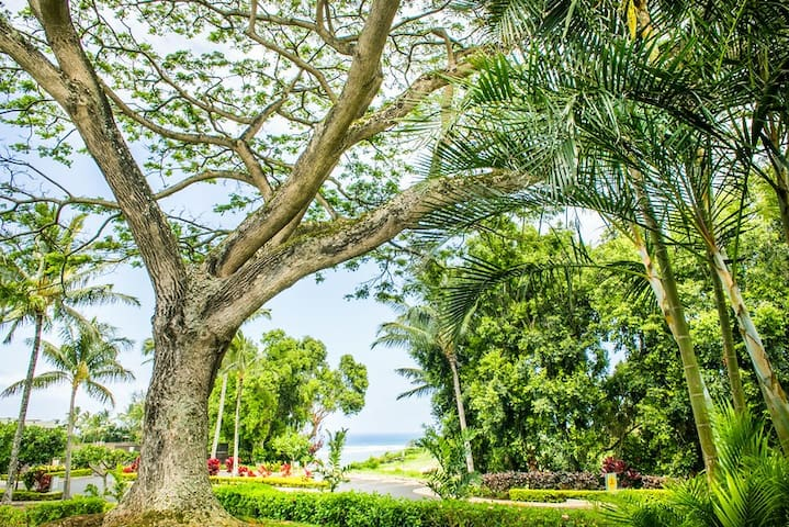 Private & Remarkable Ocean View - Princeville - House