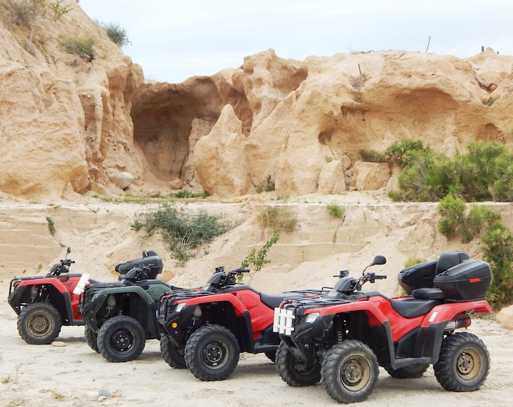 Late model and well maintained ATVs.