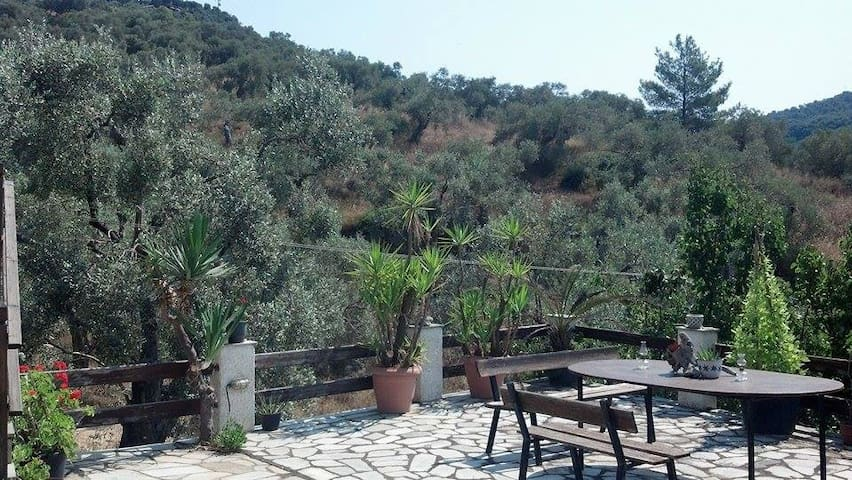 Comfortable Studio near seaside - Argalasti - House