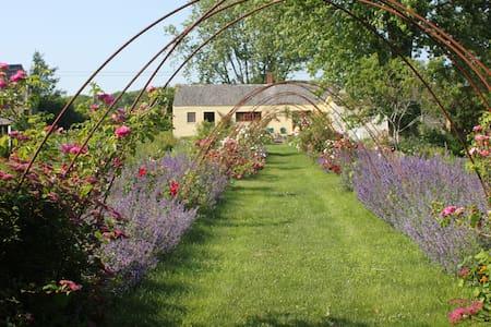 Heartfelt Farm & Gardens; Elizabeth - Cushing