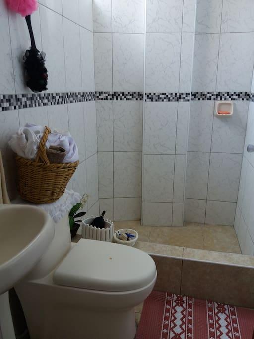 Puede disponer de shampoo, jabón, toallas,papel higiénico